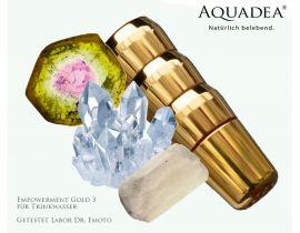 Aquadea Empowerment Gold 3 Labor Dr. Emoto zertifiziert LifeSource special edition