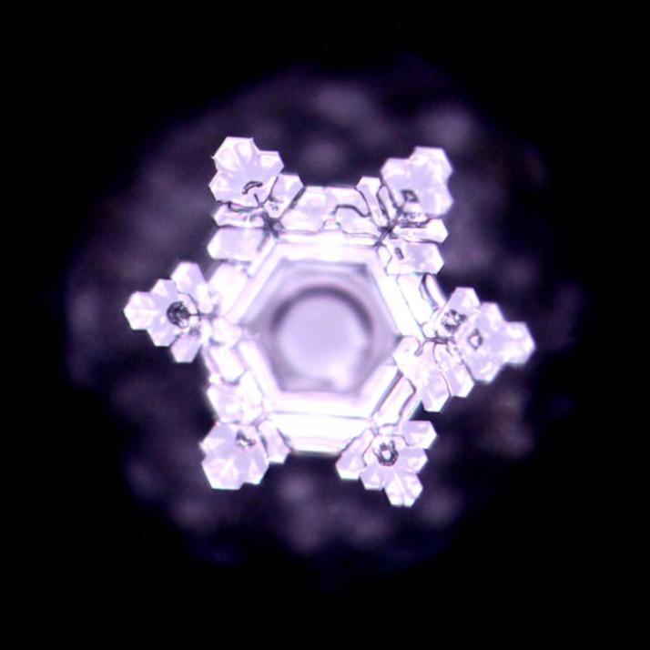 Masaru Emoto - Wasserkristall Fotografie